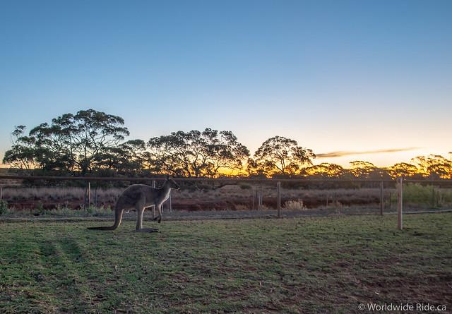 Western Australia-9