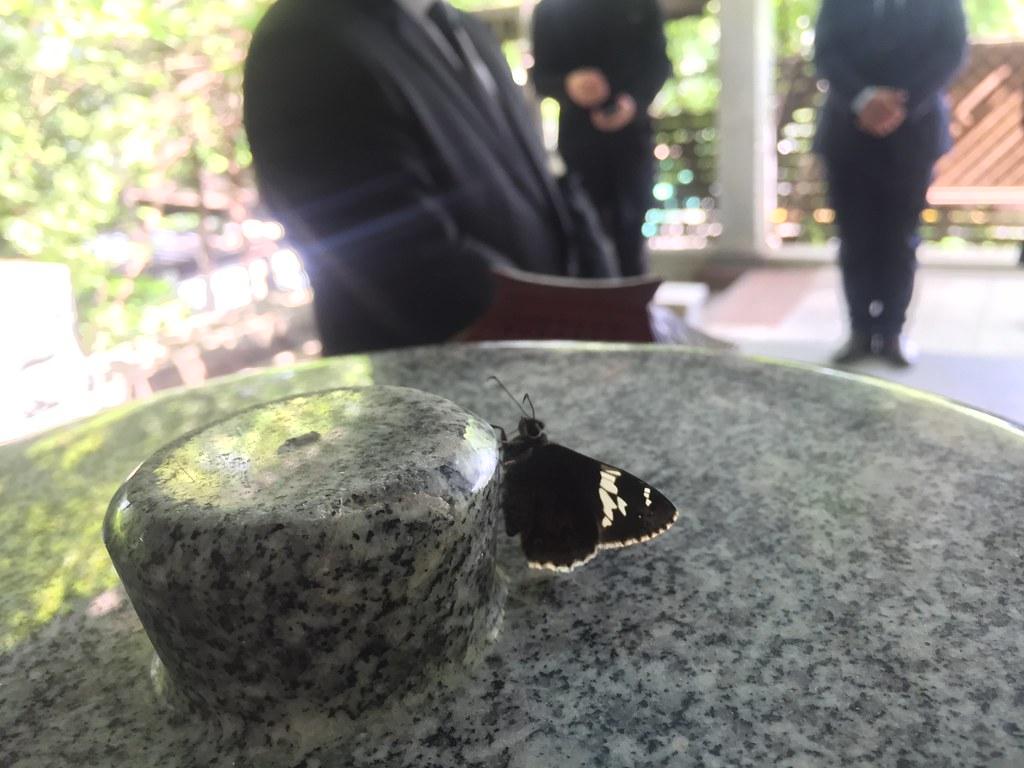 20180525_무연고 사망자 장례지원 (55)