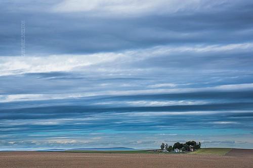 pnw washingtonstate clouds blue sky minimalistic minimalism farm landscape nikon nikond810 jeanmarieshelton tamron withmytamron