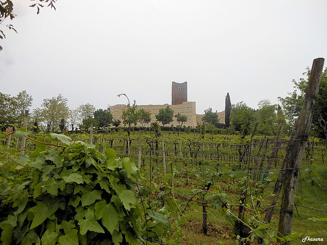 Castle of Juliet and wineyards, Montecchio Maggiore