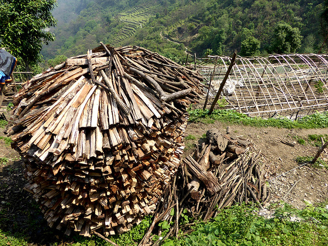 Timber being stacked high in organised stacks to the onslaught of the severe Nepali Winter in the Mountains