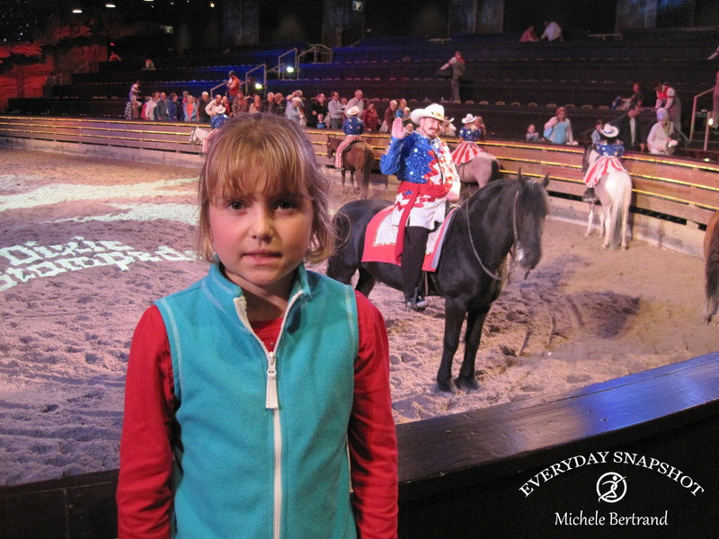 17 Dixie Stampede