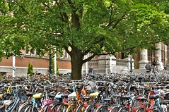 Groningen stad en Provincie / City and province
