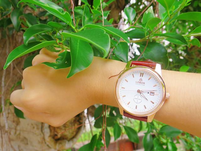 LOBOR手錶 (5)