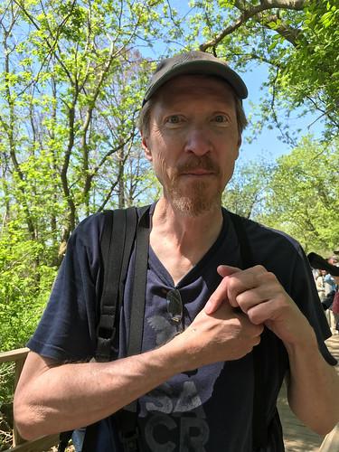 Cerulean Warbler Poop! On Curt Rawn's hand!