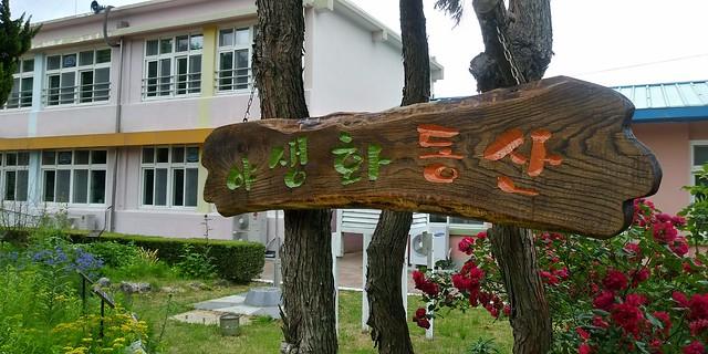 야생화동산 | 화북초등학교