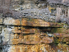 Bleeding unconformity (Chattanooga Shale over Cumberland Formation; Burkesville West Rt. 90 roadcut, Kentucky, USA) 11