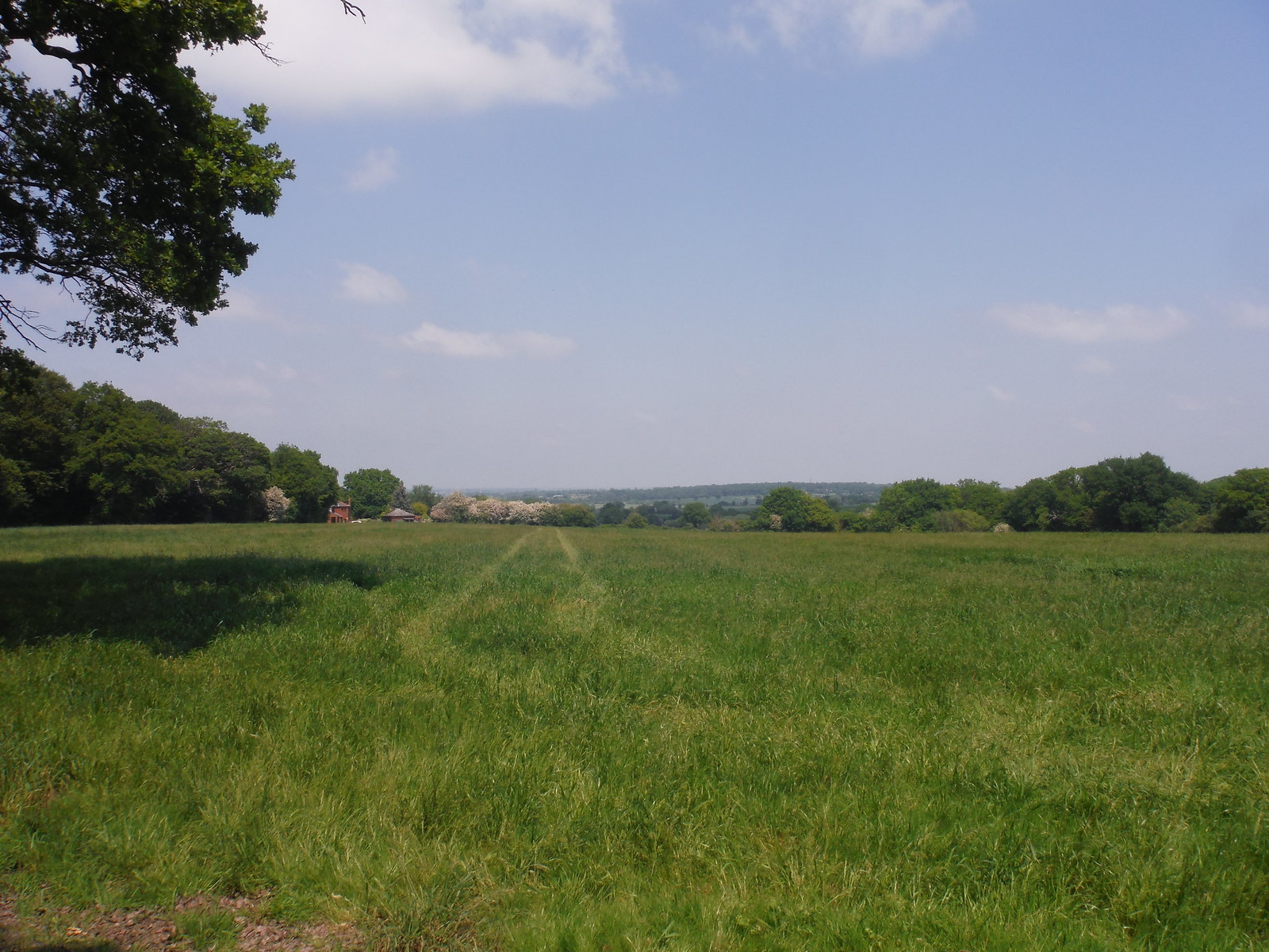 Long Views in Essex SWC Walk 158 - Ingatestone to Battlesbridge or Wickford