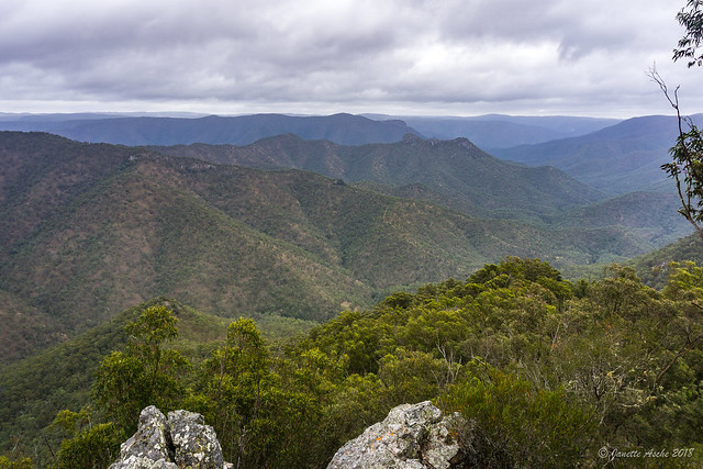 Green Gully Track: view from The Rocks Lookout