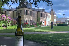Chateau Ste Michelle - Woodinville Wine Country