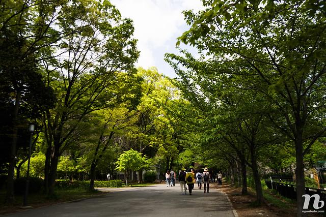 Du lịch bụi Nhật Bản (11): Osaka Castle (Thành Osaka hay Lâu đài Osaka) và chợ Kuromon