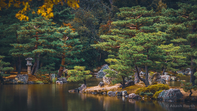 Japan Travels 014
