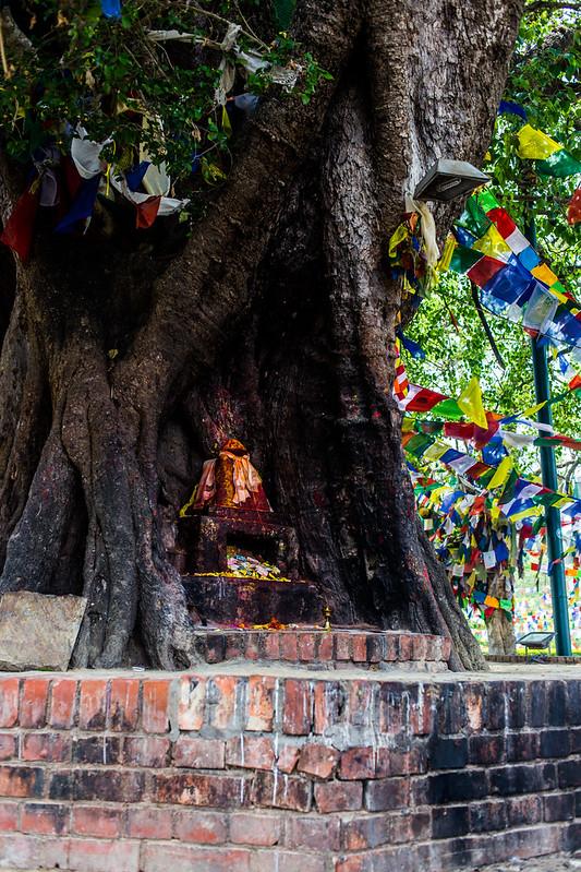 Nepal 2018_-136