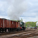 Passing steam hauled Goods trains