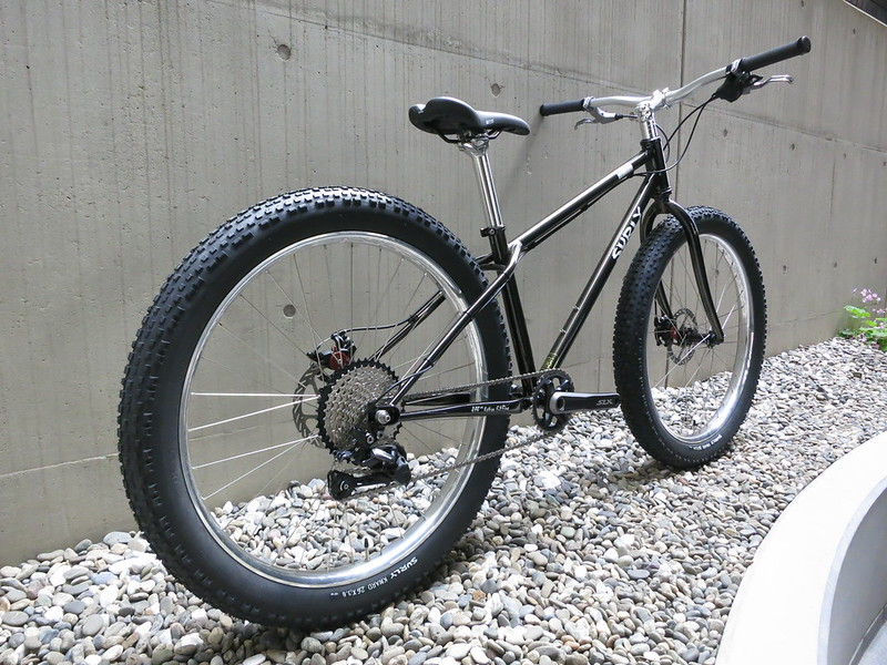 SURLY Lowside 1X10 3