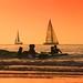 Bathing & sailing - Tel-Aviv beach - Follow me on Instagram:  @lior_leibler22 by Lior. L