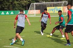 Treino no CT do Palmeiras. Fotos: André Hiltner/ EC Vitória