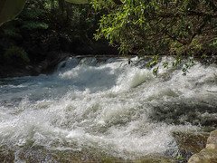 North Fork French Broad River_2018