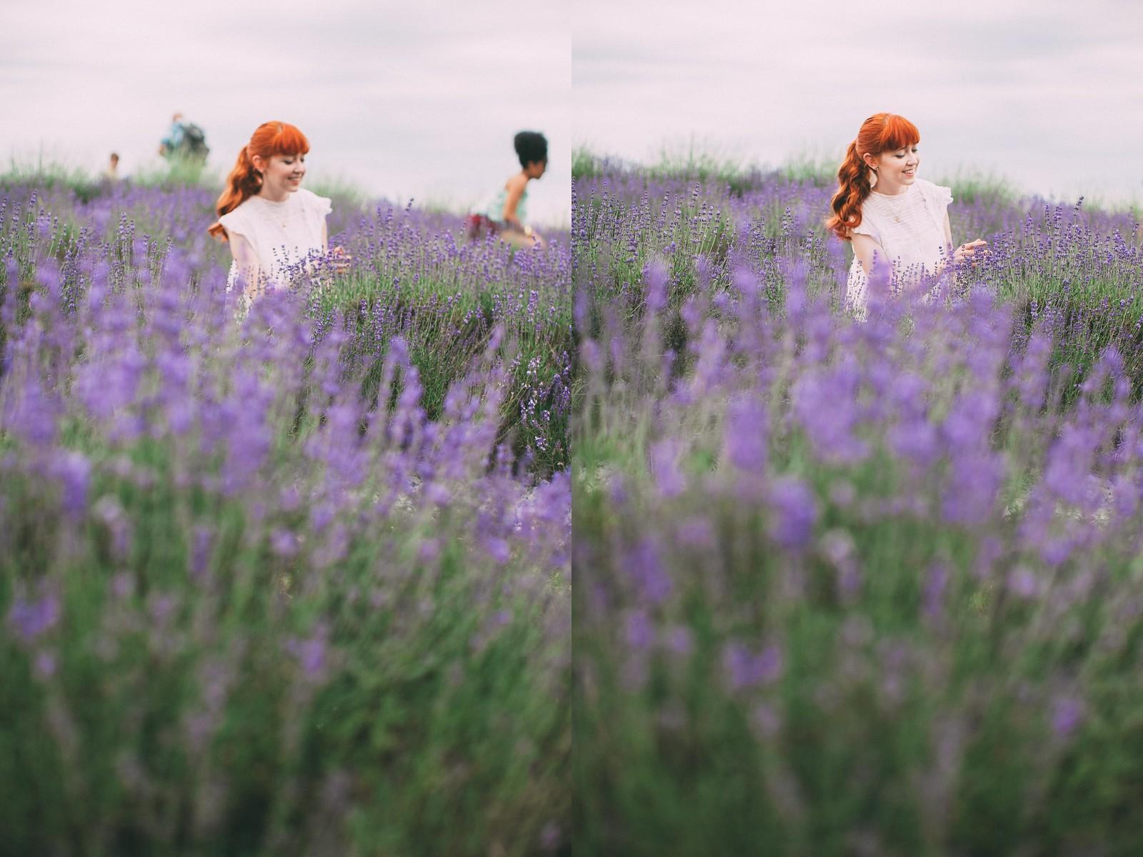lavender-27-side