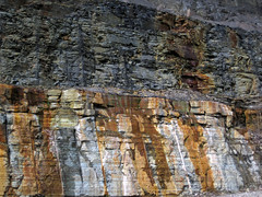 Bleeding unconformity (Chattanooga Shale over Cumberland Formation; Burkesville West Rt. 90 roadcut, Kentucky, USA) 2
