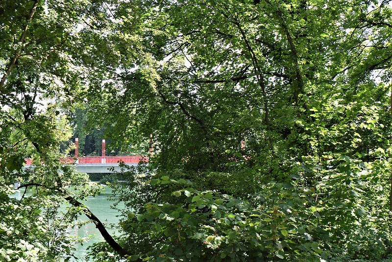 River Aare 18.06 (9)