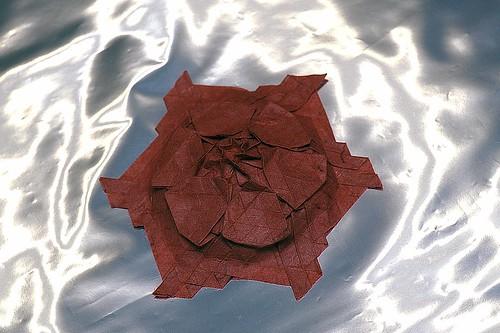Origami Starflower (Marjan Smeijsters)