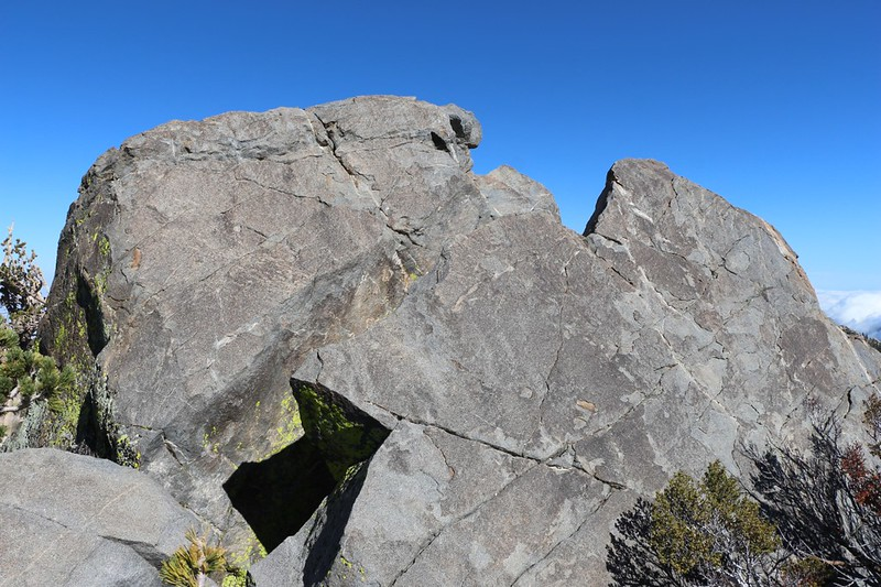 The dark granite summit blocks of Harvard Peak - there was a deep slot between them so we didn't climb it