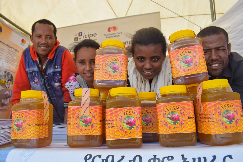 icipe at World Bee Day and the 1st National Honey Festival