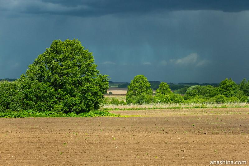 Деревца, Владиирское ополье