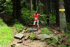Zemaník a Causidis se střetnou o víkendu při KTRC Králickém půlmaratonu