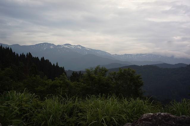 CONTAX Gレンズ総動員で挑む西山白山高山植物園その1