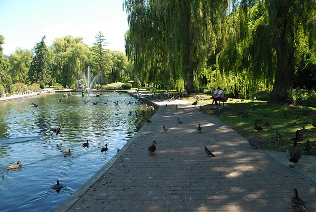 Polson Park (46)