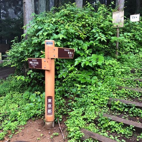 和田峠登山口