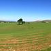 West Kilbride panoramic photos13