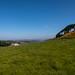 West Kilbride Landmarks (9)