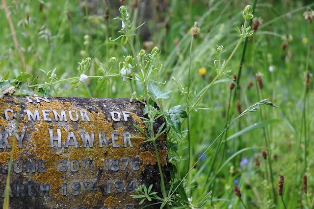 Hawker Memorial, Piddletrenthide Churchyard