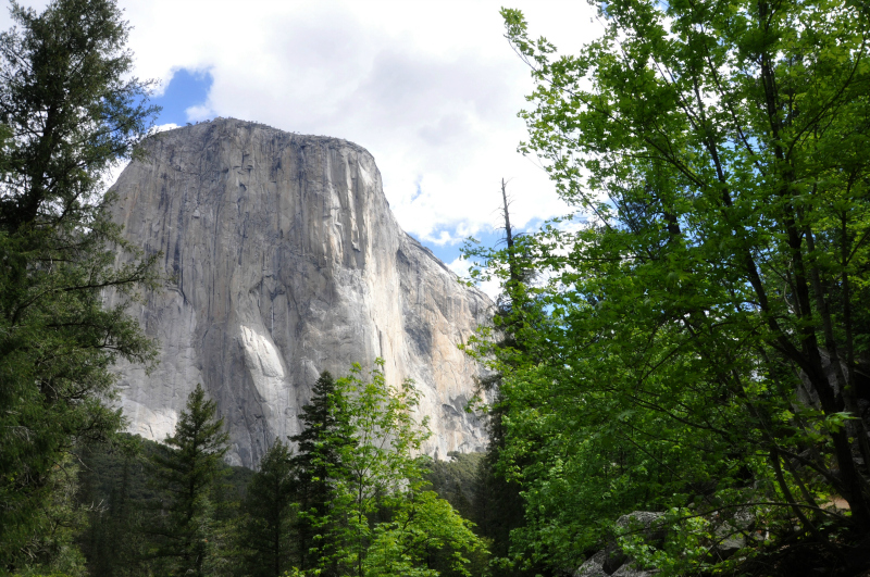 Yosemite El Capitan @ Mt. Hope Chronicles