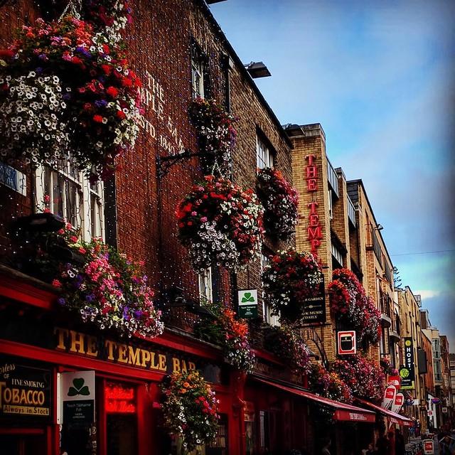 where to drink in Dublin Bar neighborhood