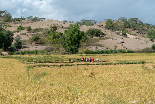 Timor-Leste-8