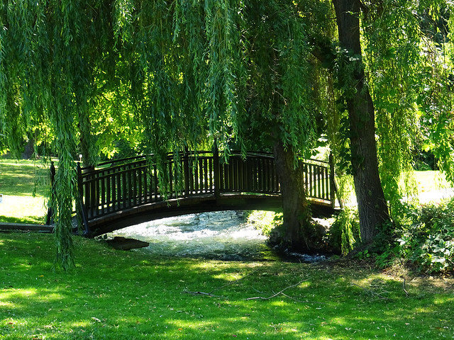 Polson Park (18)