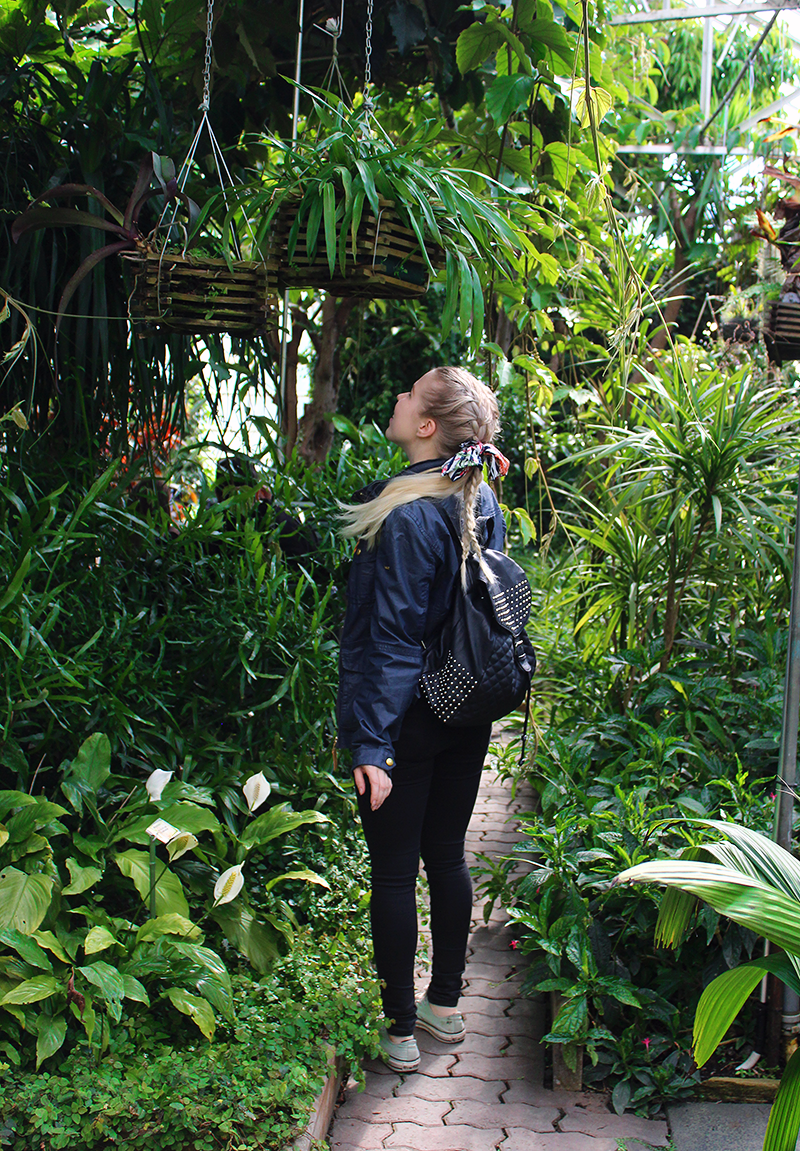 puutarha1