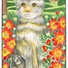 Scottishfold cat with bidens in the countryside