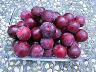 This week's plum harvest