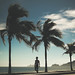 A man walking by a beautiful beach and some palm trees on a blue sky sunny summer day in Rio de Janeiro, Brazil.