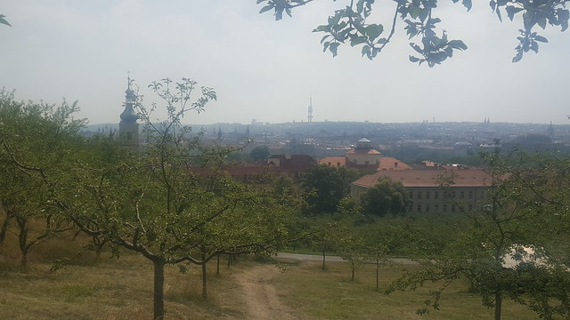 View of tops of buildings and homes in Prague, Czech Republic from an orchard.