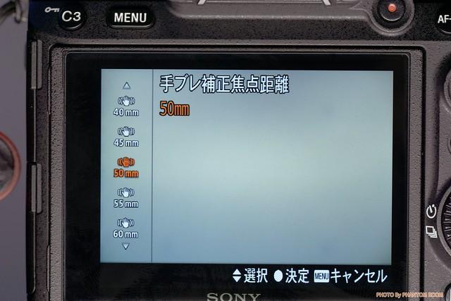 DSC09136_1