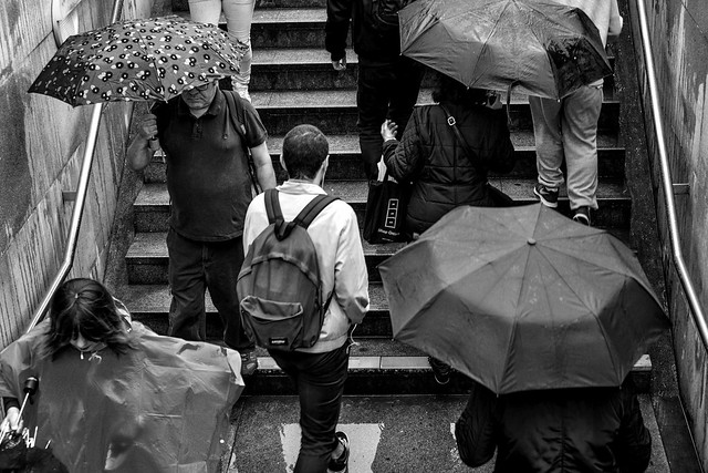 Not Afraid of the Rain