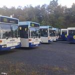 Travel Coventry Mercedes-Benz 0405GN Bendi Buses at Pensnett (NXWM)