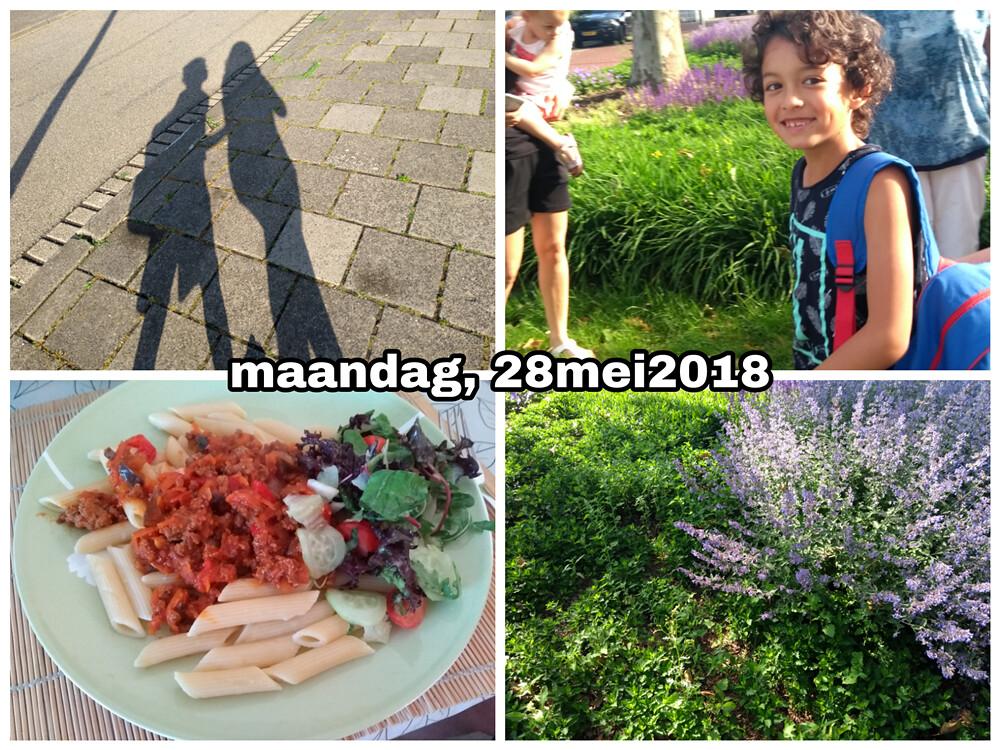 28 mei 2018 Snapshot