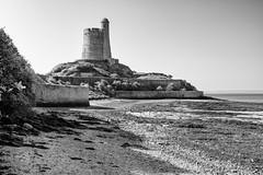 Fortification Vauban, Le Fort de la Hougue
